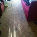 Bellevue-Carpet-Clean-before