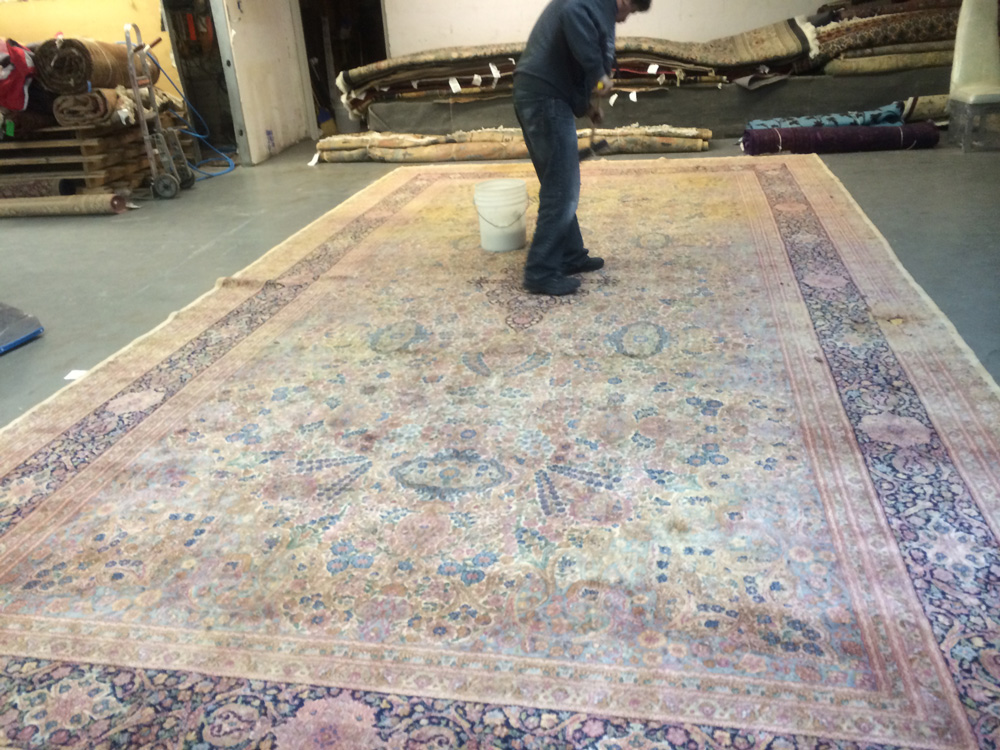 Rug Cleaning Bellevue Roselawnlutheran