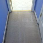 Bellevue-Vomit-after-carpet