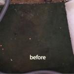 Bellevue-before-carpet