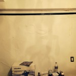 Bellevue-mold-damage