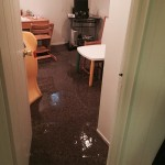 Bellevue-office-room-flood-damage-repair