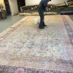 Commercial Carpet Cleaning Bellevue